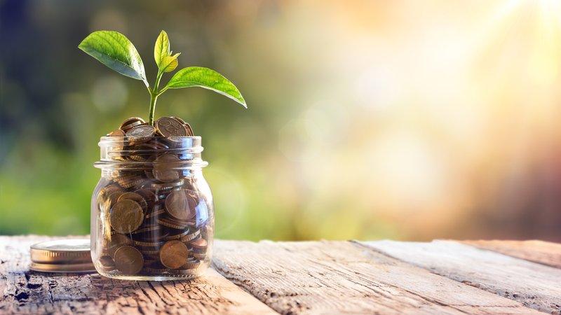 Como Investir na Bolsa de Valores </br>(Guia Para Iniciantes)