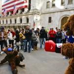 ...Mas o Quê o Mercado Financeiro Tem a Ver Com Ursos e Touros?