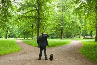Devo Investir em Ações Ordinárias ou Preferenciais?